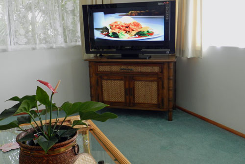 Hawaii Vacation Rentals, Kohala Big Island, Sony Bravia TV
