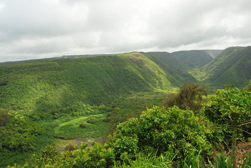Pololu Valley forms a deep cut in the side of Kohala Mountain, and is traversed in its entirety by Pololu stream