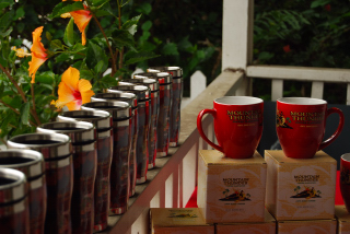 kona coffee, coffee and art stroll, big island vacation rentals