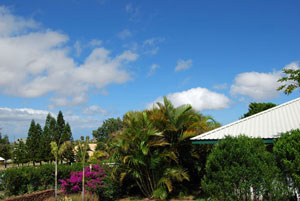 Hawaii Vacation Rentals, Kohala Big Island