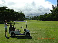 Big Island, Hilo, golf