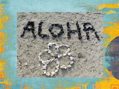 Random Acts Of Aloha - Culture of Aloha