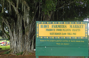 Hawi Farmers Market, Big Island, Hawaii