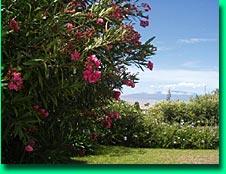 Big Island vacation rental, view of hualalai